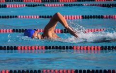 Swimming and Diving Places High at States