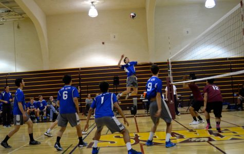 Eagles Win Big in First Round of CCS Tournament