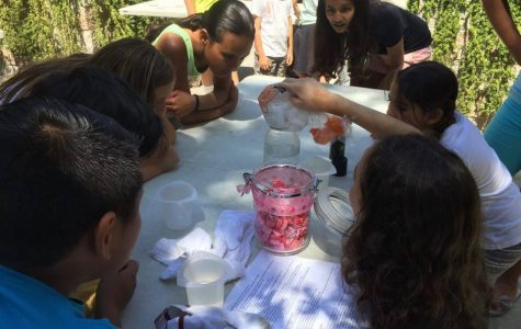 WiSTEM Raises Funds to Send Girls to Science Camp