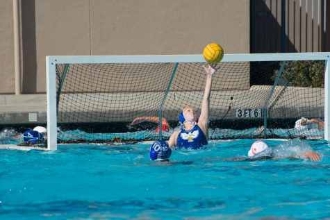 Reaching CCS Championship, Girls Water Polo Seeks to Topple Mountain View