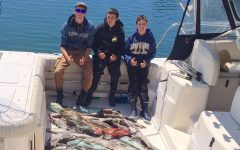 Fishy business with the Hofmann brothers