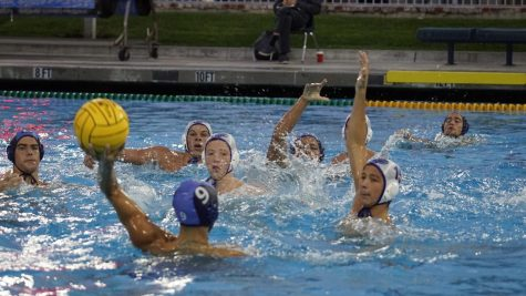 Boys water polo ends historic season