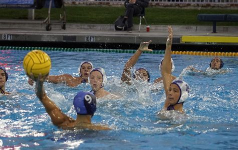 Boys water polo ends historic season