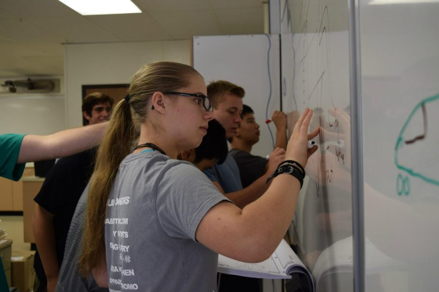 Senior Zosia Stafford works on a problem in Aerospace Engineering. Zosia credits her female STEM teachers for inspiring her to continue pursuing STEM, and hopes to inspire students too. Talon file photo.