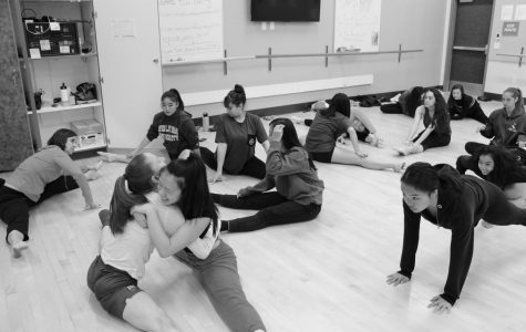 Dance show: Spotlighting Diversity in Style