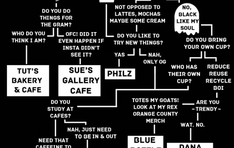 Which Coffee Shop Are You?