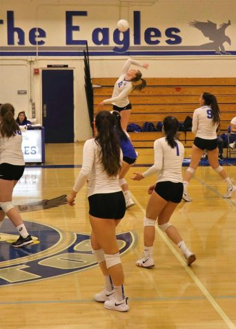 Eagles drop rivalry volleyball game to Mountain View