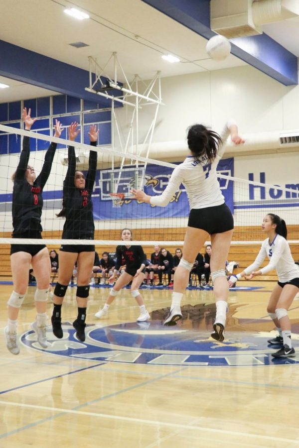 Senior Jackie Wang spikes the ball against Aragon High School. Varsity girls volleyball beat Aragon 3-0 and advanced to the State Tournament's semifinals.