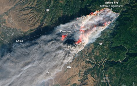 The MVLA School District closed both of its high schools on Friday, November 16 due to spreading smoke from the northern California Camp Fire. It took firefighters more than two weeks to contain the blaze that started on November 8. Courtesy NASA Earth Observatory.