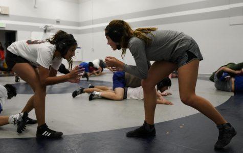 Wrestling smacks down gender stereotypes