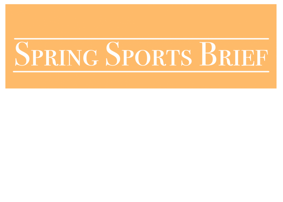 Spring Sports Brief
