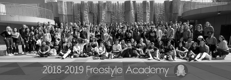 Courtesy+Freestyle+Academy
