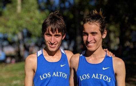 Sage twins: Same genes, different dreams