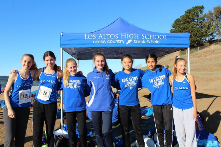 The+varsity+girls+team+is+about+to+warm+up+for+their+race.+From+left+to+right%3A+senior+Kat+Nasif%2C+sophomore+Sara+Kostka%2C+sophomore+Shelli+Lewis%2C+sophomore+Riley+Capuano%2C+junior+Suzanne+Guo%2C+freshman+Lauren+Soobrian+and+freshman+Fiona+Bodkin.+