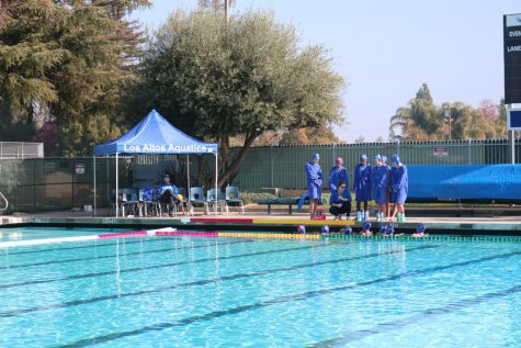 Varsity girls water polo defeated in CCS semi-finals