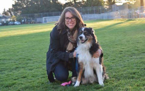 Dogs of Los Altos