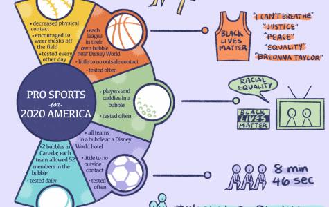 Professional Sports in 2020 America